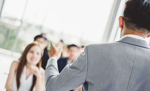 Vivalize Leadership Opportunities